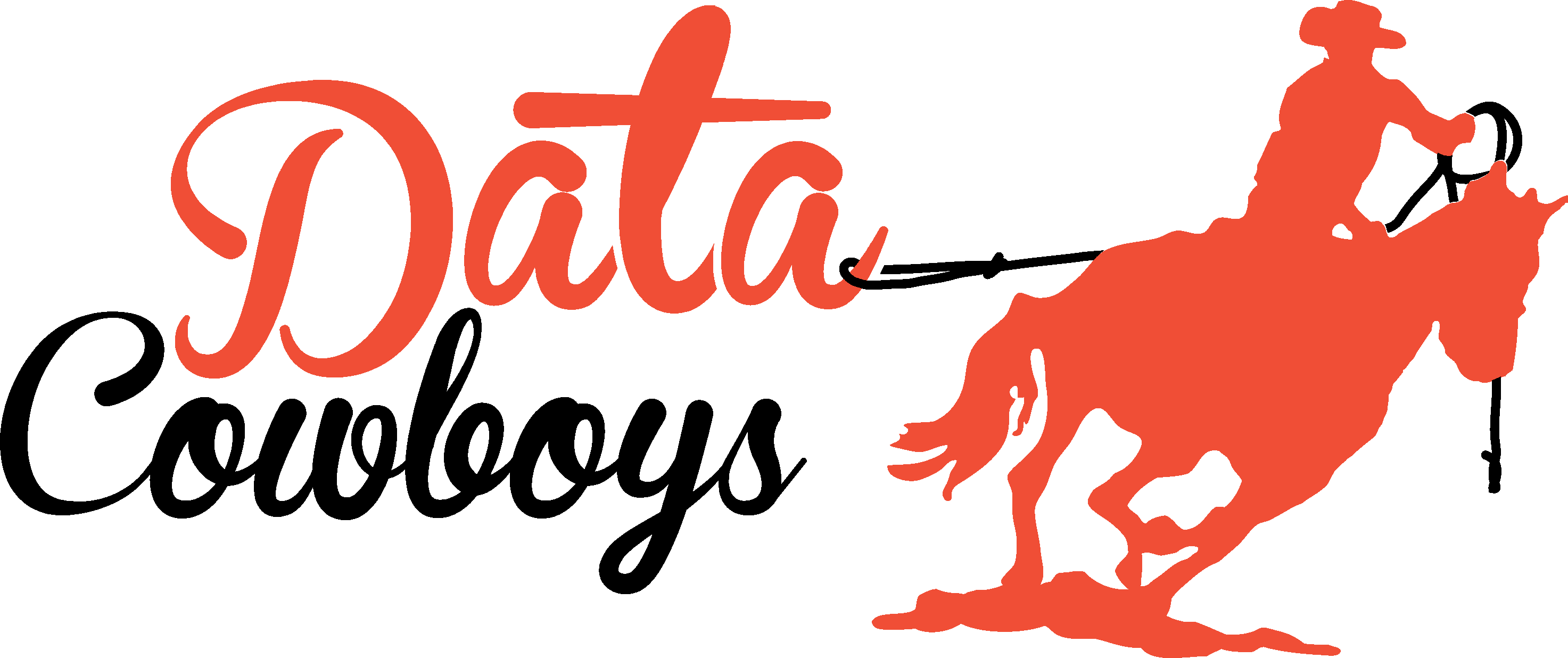 Data Cowboys Logo